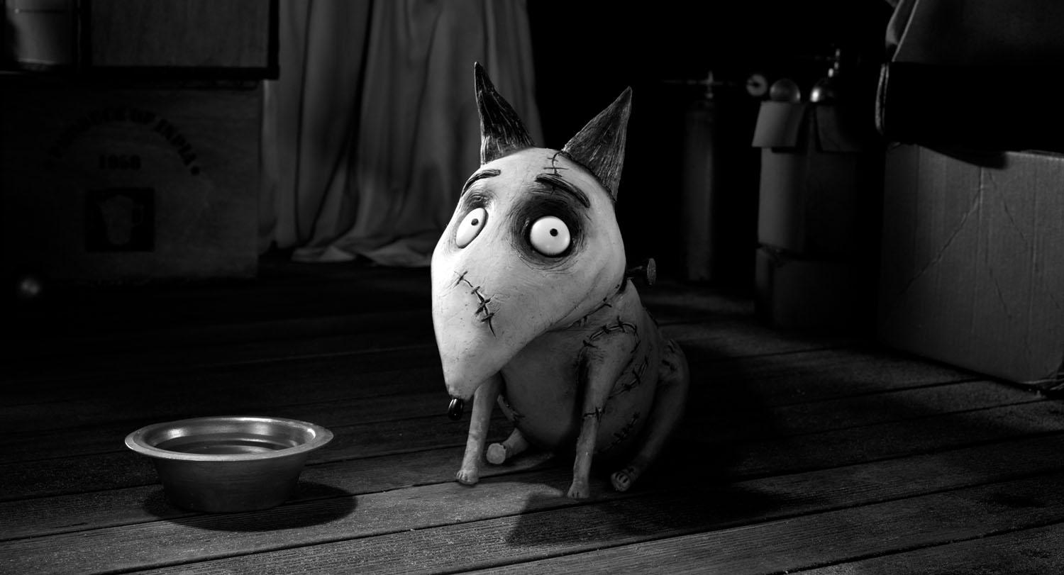 photo-Frankenweenie-2012-9