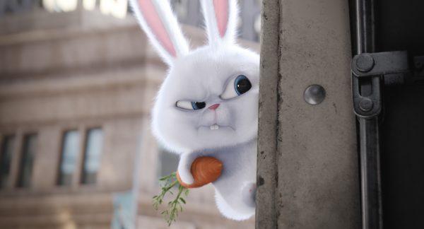 the-secret-life-of-pets-bunny