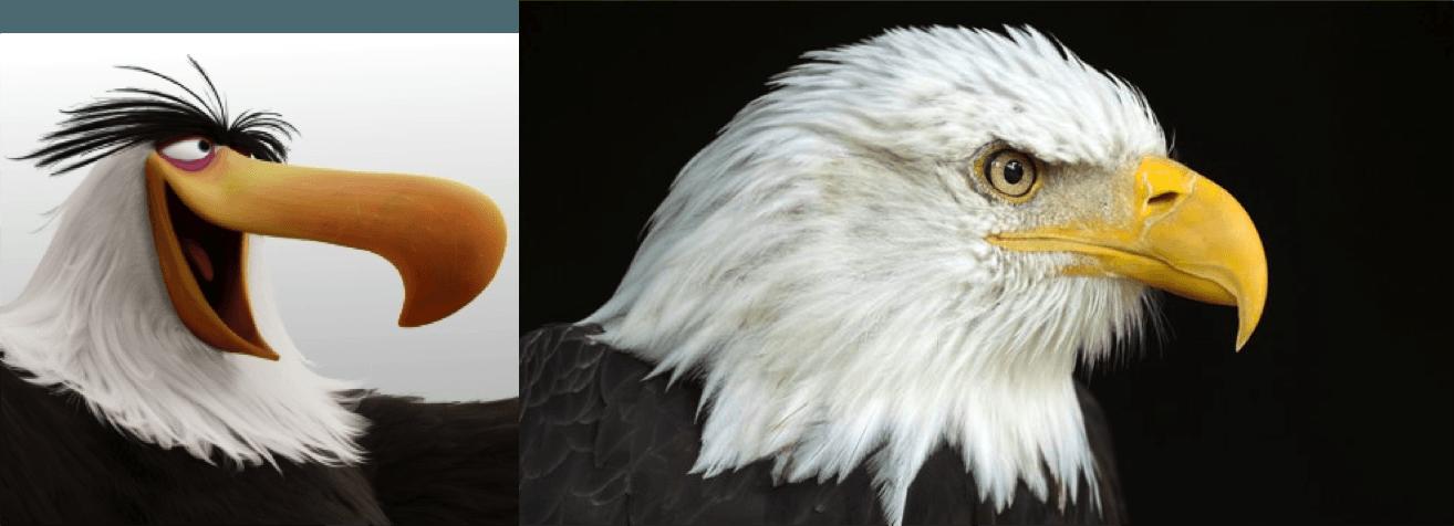 L'aigle royal, vieilli, vénère parce qu'il vient de se rendre compte qu'il a bouffé Pocahontas hier au déjeuner
